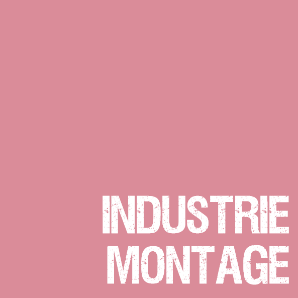 AIM_Industriemontage